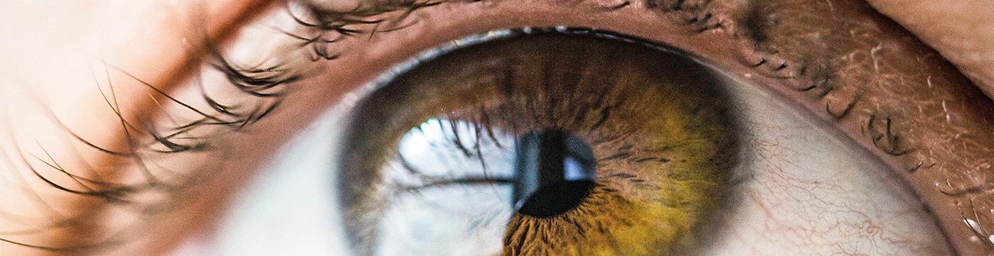Ihr Augenarzt aus Bassum und Weyhe